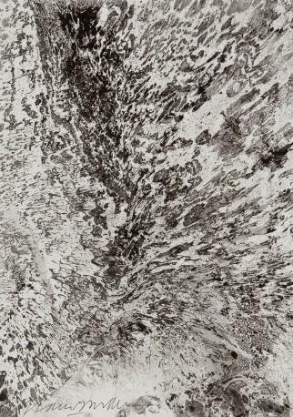 BOULLET Alain - L'eau et l'huile - BOULLET_ALAIN_650