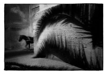 Série Nuit, Agadir, 2008 - n° 1 / 7