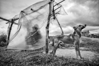 Série regard, Ambalakely, 2015 - n° 1/15