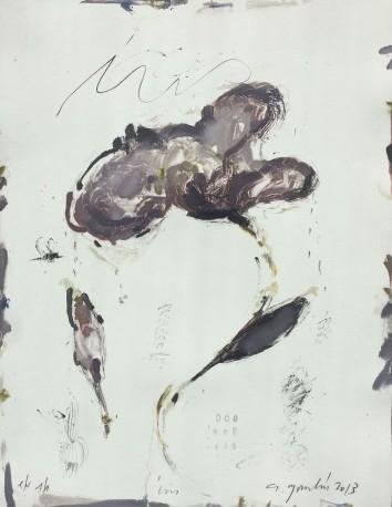 Iris - GORODINE_ALEXIS_936