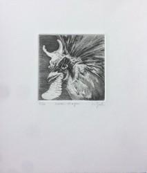 Oiseau-Dragon, n° 5/30