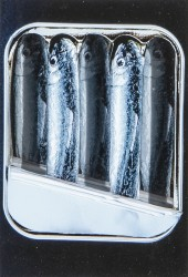 Relief sardines