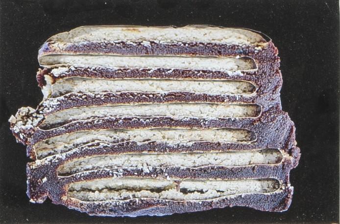 Relief gâteau - RENOIR_JACQUES_164