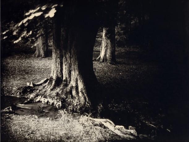 Gorze - ANTOINE_ERIC_9
