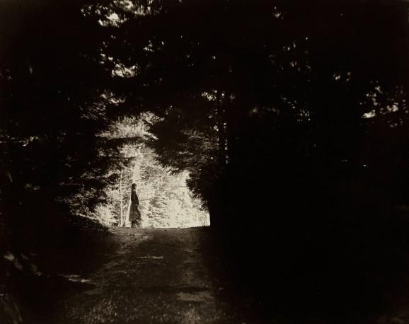 Mon chemin - ANTOINE_ERIC_16