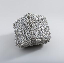 Cub macanografiat gran (2012)