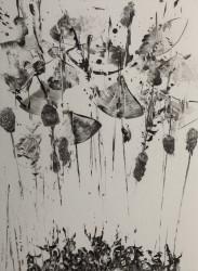 Le bataillon des mousses, n° 9/30 (2013)