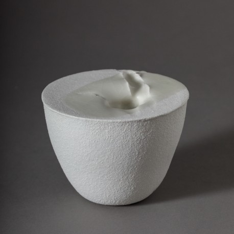 Tulipe (2006) - VIOT_JEAN-PIERRE_144