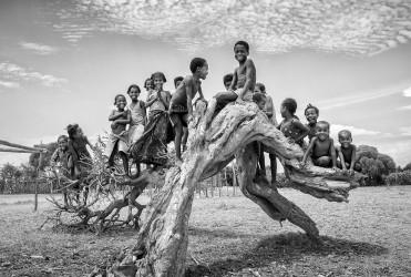 Arbre généalogique, vers Bekily, région Androy, Madagascar, n° 1/30 - 2008