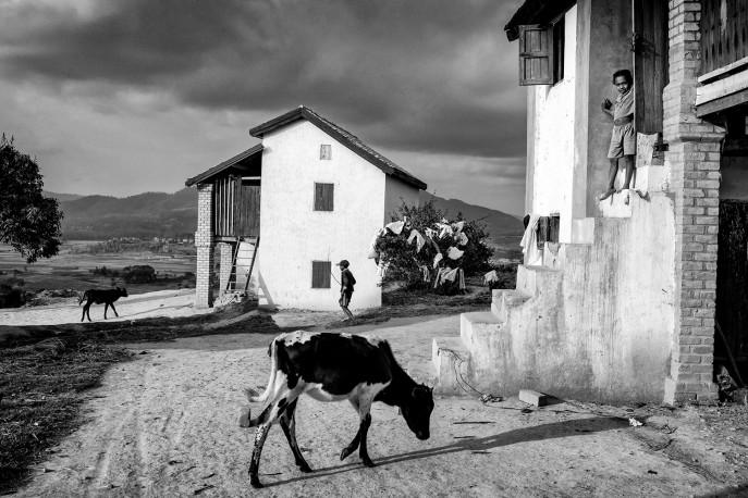 Les pavillons des glaneuses, Iboaka, Fianarantsoa, Madagascar, n° 1/30 - 2020 - PIERROT_MEN_259