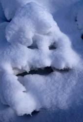 Le Bonhomme de neige. Tas de neige sur le chemin, Clavans en Oisans, 2007 - n° 1/3