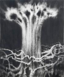 La mémoire des arbres (2020)