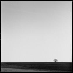 Envisager le paysage - n° 1/5 (2021)