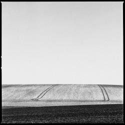 Envisager le paysage - head print