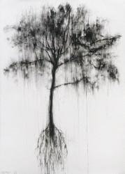 Envol d'arbre