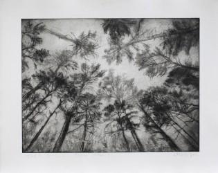 Forêt 2+3.1, série Pollen - tirage unique