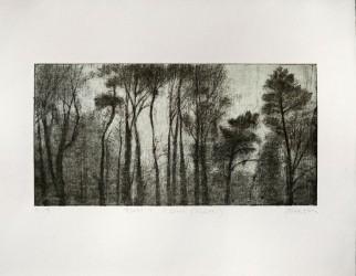 Forêt 1, série Pollen - EA 2/2
