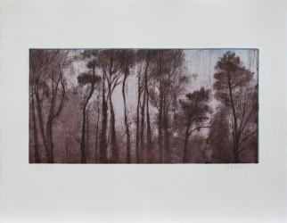 Forêt 1.1, série Pollen - tirage unique