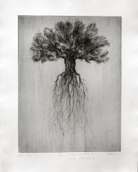 Envol de l'arbre 2, série Pollen - n° 2/3