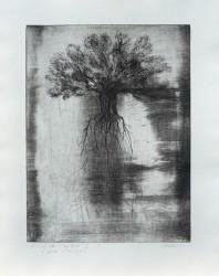 Envol de l'arbre 2.1, série Pollen - tirage unique
